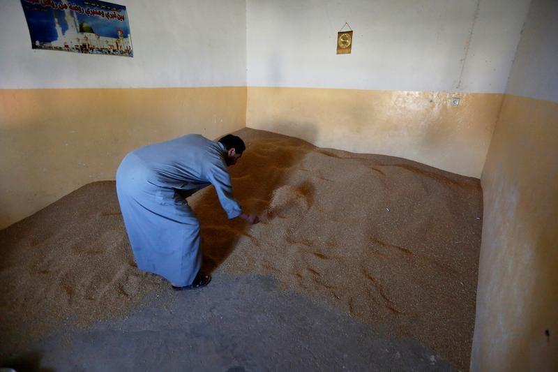 العراق: شراء 3.1 مليون طن من القمح المحلي منذ بداية موسم 2017