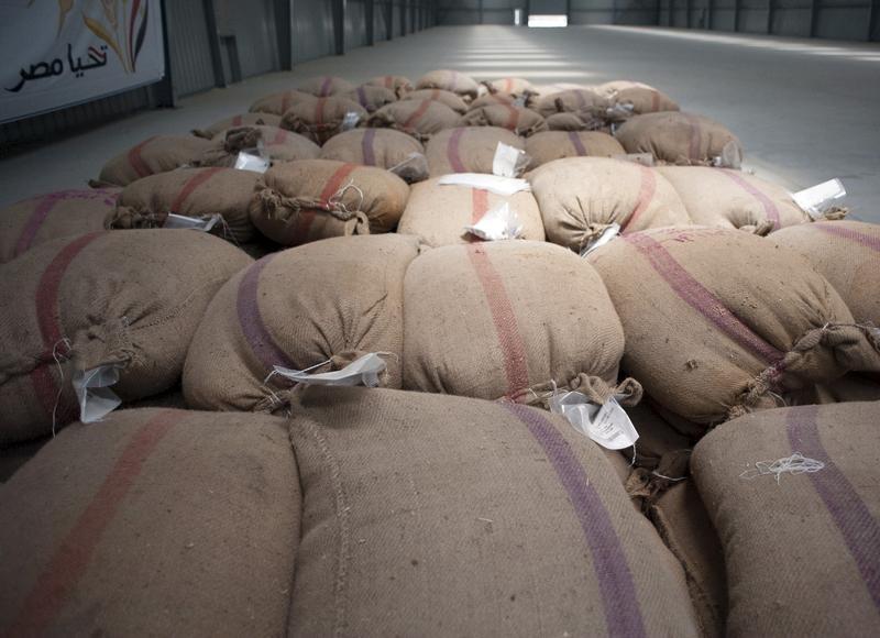 هيئة السلع المصرية تطلب قمحا للشحن في 21-31 أغسطس