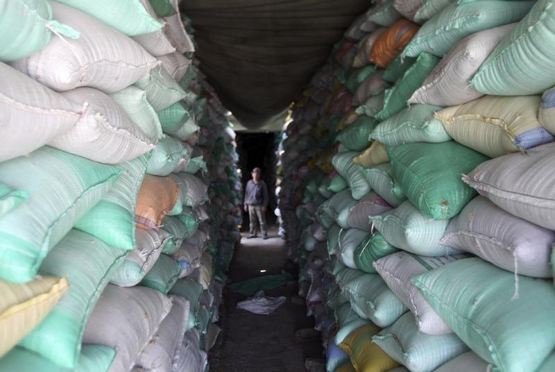 السعودية تطرح مناقصة لشراء 660 ألف طن من علف الشعير